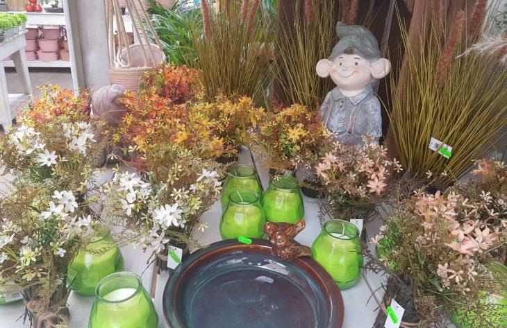 Herbst Dekoration Blumen Minden